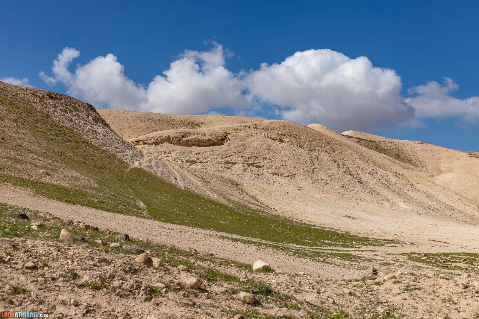 По Иудейской пустыне на внедорожнике - от Арада до Иерусалима