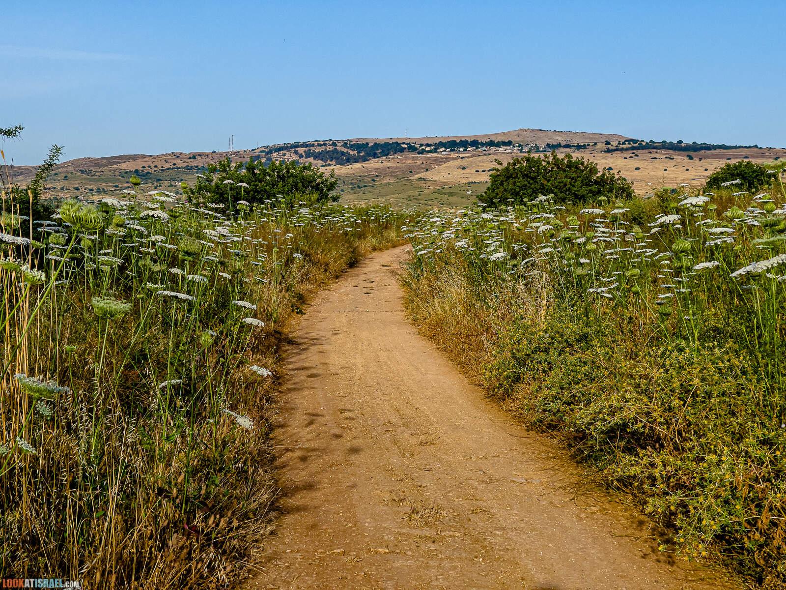 По горам Нафтали