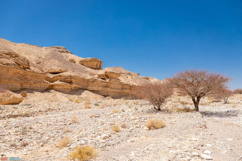 Млечный путь в Махтеш Рамон, внедорожное путешествие по ручьям Нахаль Карком и Маазар, Махтеш Ариф и Долина родников - ручей Кибуцим   LookAtIsrael.com - Фото путешествия по Израилю