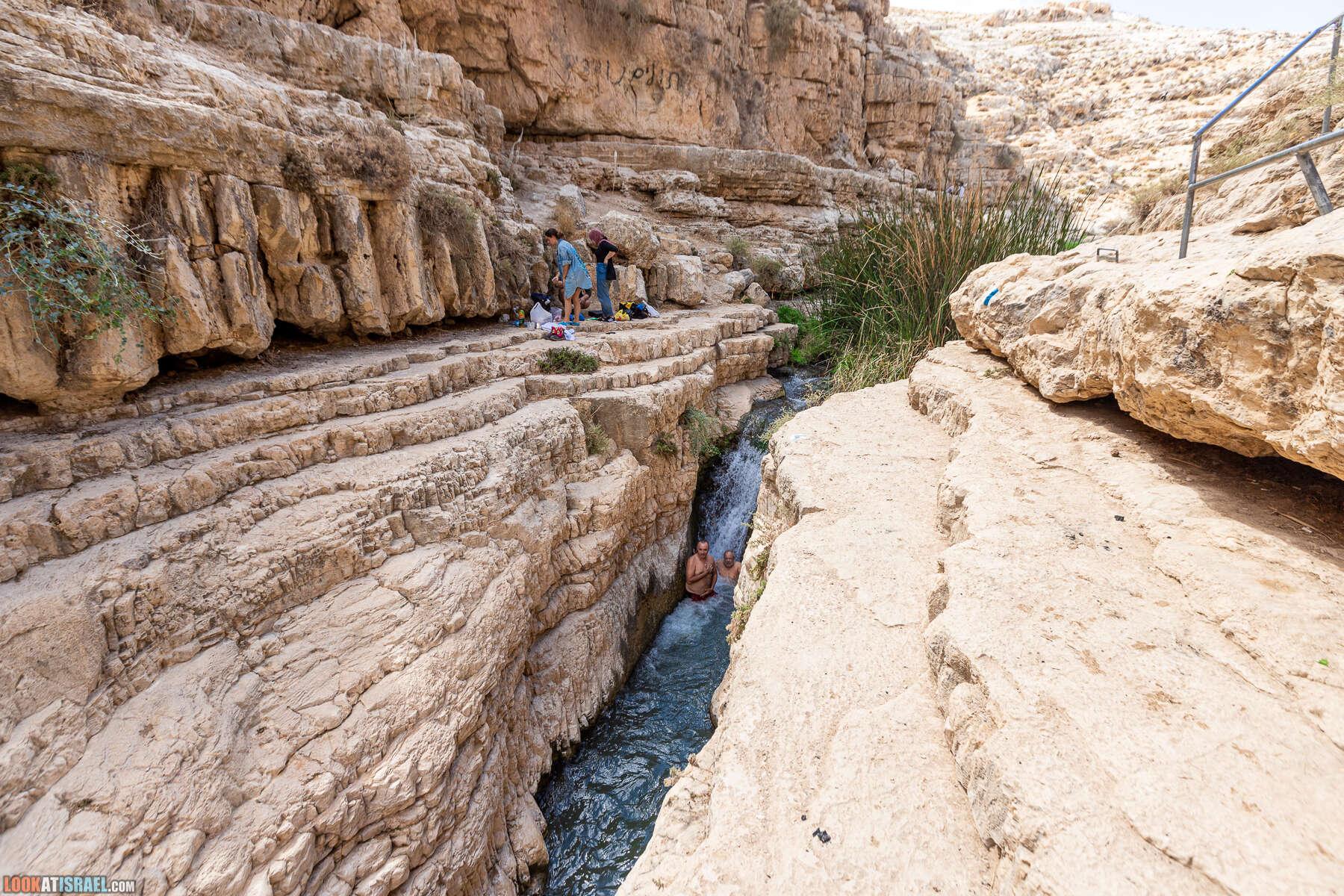 Ручей Нахаль Прат | Nachal Prat stream | נחל פרת