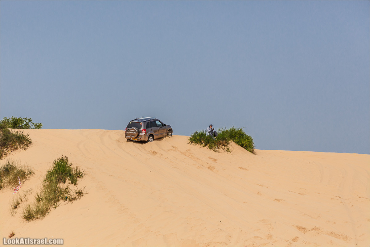 Курс вождения по бездорожью | Пески и дюны | LookAtIsrael.com - Фото путешествия по Израилю
