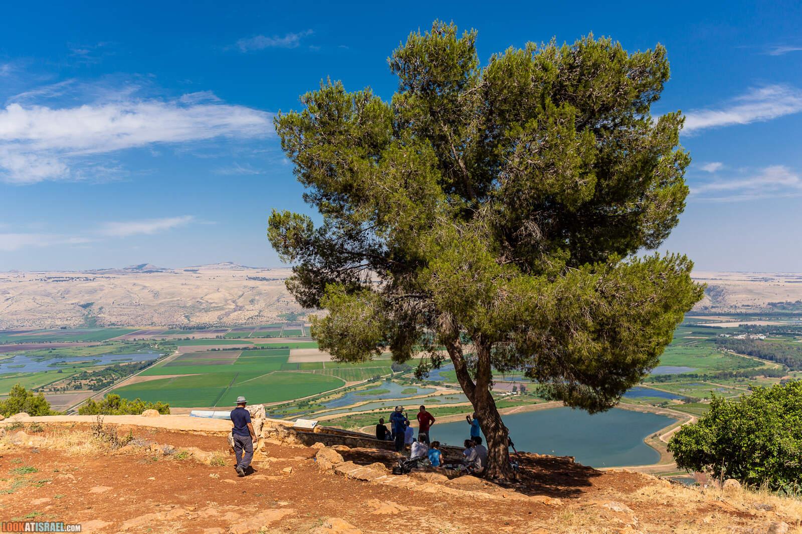 Путешествие по горам Нафтали. Крепость Бунин, Рош Пина, ручей Дишон, горный Иордан, лес Бария и источник Эйн Тау | LookAtIsrael.com - Фото путешествия по Израилю