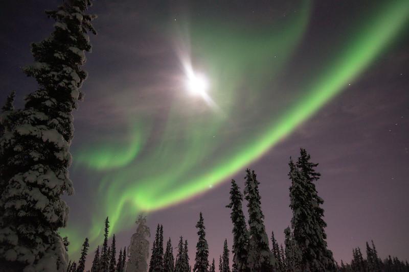 Aurora shining in the bright moonlight