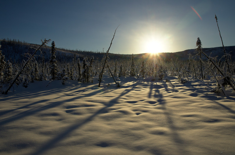 Sun on the hills - Chena River State Recreation Area