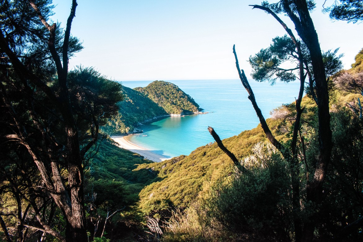 Coastal Landscapes. Another view from the Abel Tasman Coast Track, looking down from the coastal trail along rolling hills and native bush to Mutton Cove.