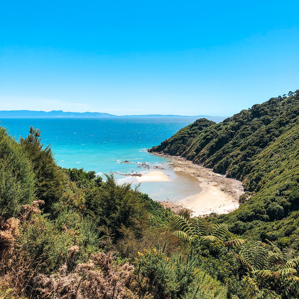 Coastal Landscapes.  A view from the top of the first ridge of the Abel Tasman National Park trail, looking back toward Takapou Bay. The trail carves out a deep section of the hillside as it wraps around the top of the hill.