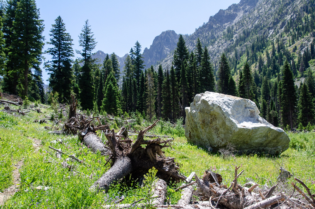 "Best Baron Lakes Idaho Hikes - Grandjean Campground and Trailhead to Redfish Lake.  A recently-felled boulder along Baron Creek, about 5-6 miles upstream from the Grandjean Trailhead and Campground. Earthquake and aftershock activity in 2020 shook massive boulders loose, including ""Smoothie,"" the pinnacle of Baron Peak."