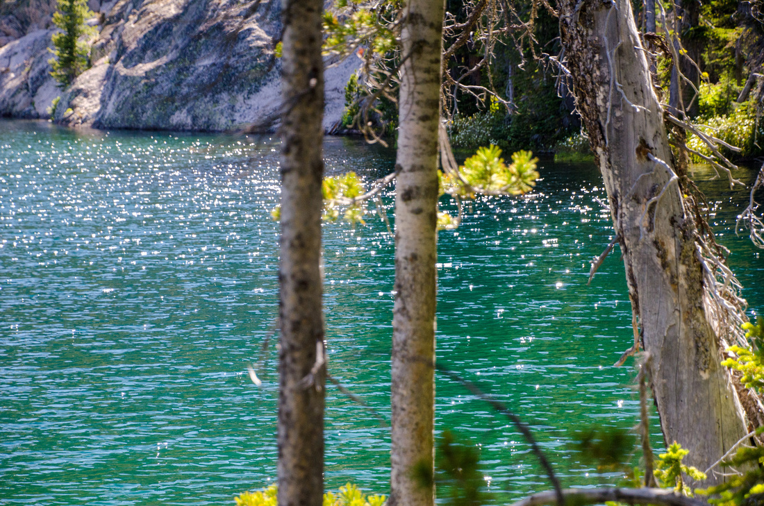 A view of the turquoise waters of Alpine Lake, through a small stand of trees on the southwestern shore.