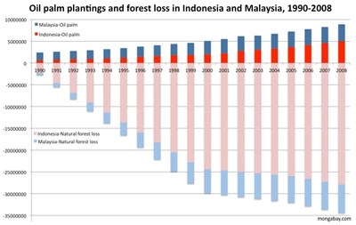 expansion of the oil palm estate across indonesia and malaysia, 1990-2008