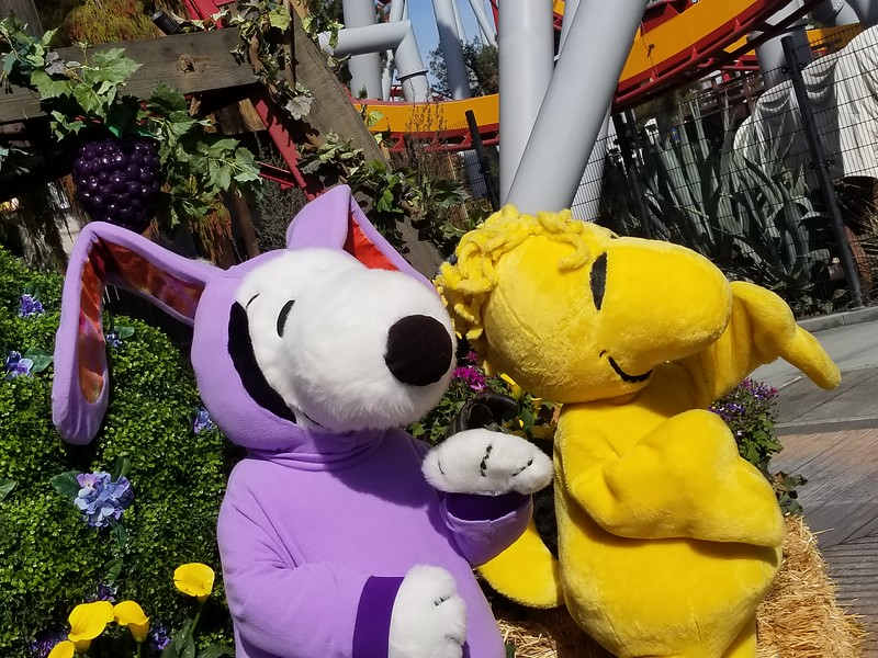 KNOTT'S BOYSENBERRY FESTIVAL 2019 confirms dates, menus, and more