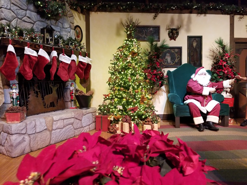 PICTORIAL: It\'s the most berryful time of the year for KNOTT\'S MERRY ...