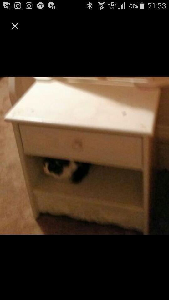 Trundle twin sleigh bed, nightstand, armoire & desk/vanity ... on Costco Furniture Showroom Kirkland Washington id=56744
