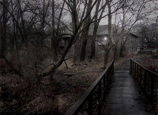 https://i1.wp.com/photos.pouryourheart.com/wp-content/uploads/2018/12/forest-houses28.jpg?w=640
