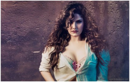 Zarine Khan Hot