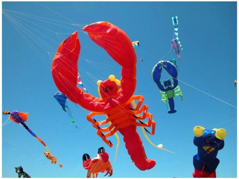 Why is Kite Flying Day celebrated