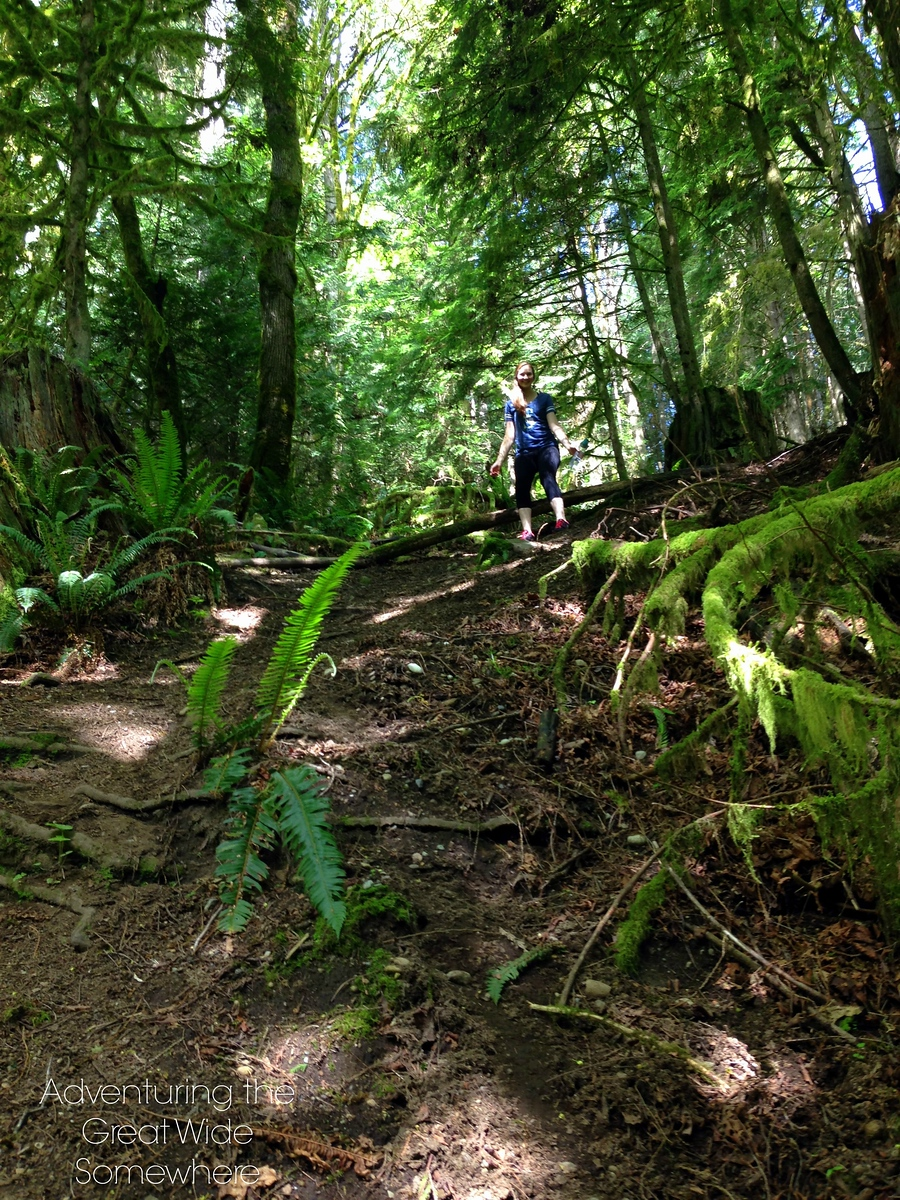 Getting Off the Puget Loop Birding Trail in Washington State