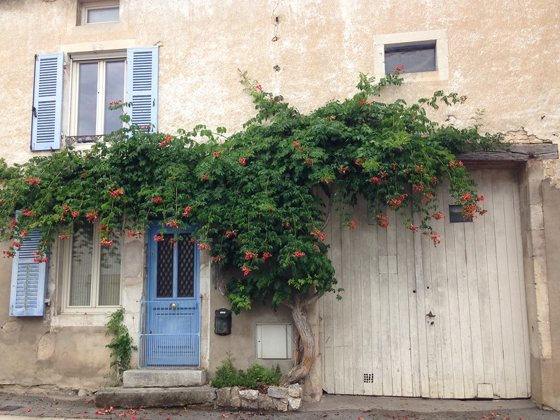 Stone Building in France With Periwinkle Blue Doors and Plenty of Blooming Ivy