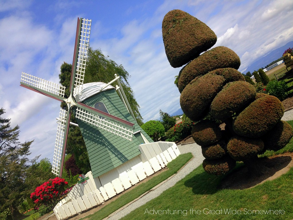 Mint Green Windmill and Topiary at the Skagit Valley Tulip Festival's Roozengaarde