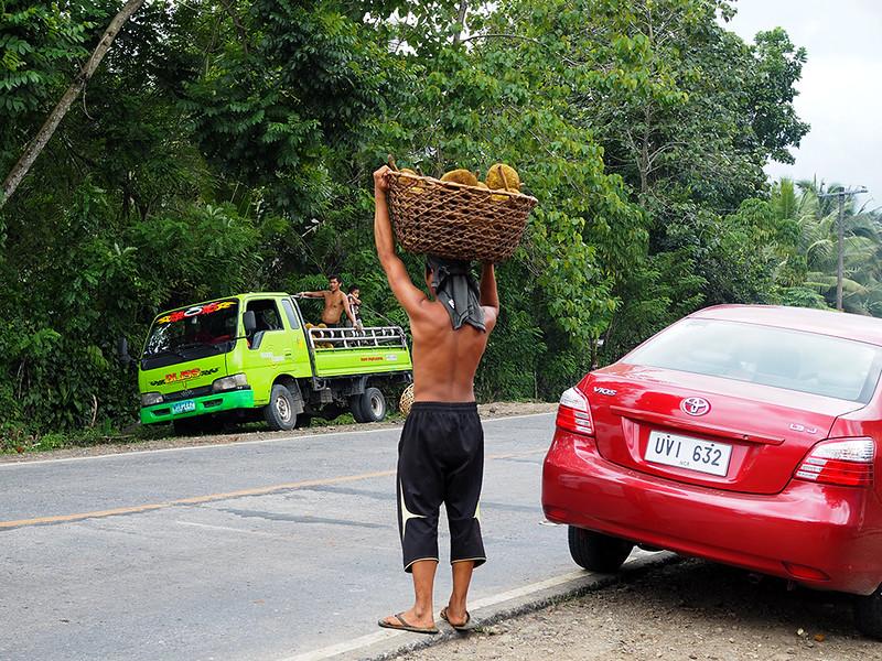 Kidapawan durian