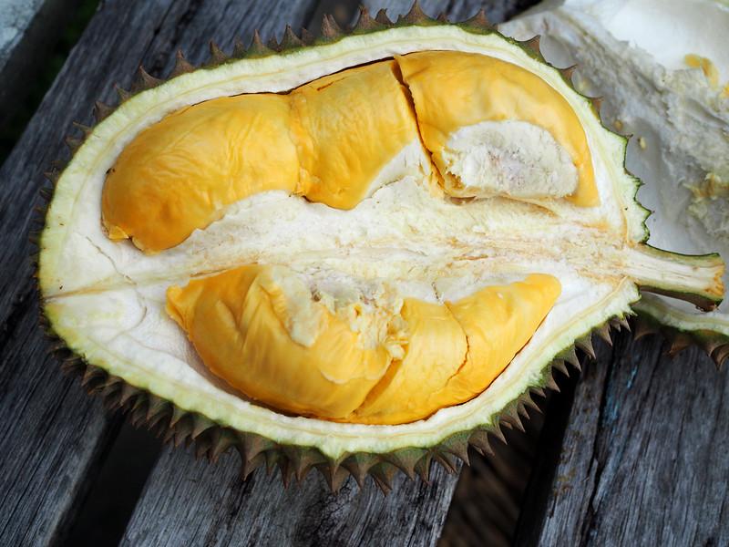 2017 penang durian
