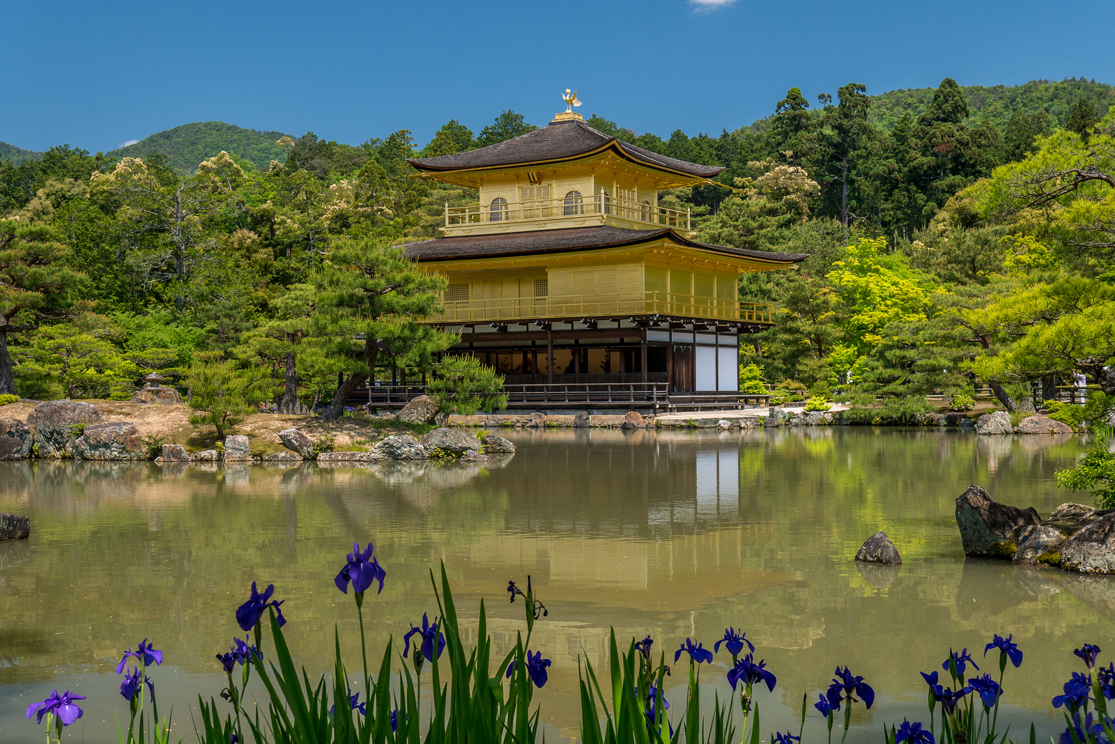 Kyoto's Golden Temple, Kinkaku-ji