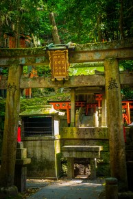 torii gates at Fushimi Inari Shrine