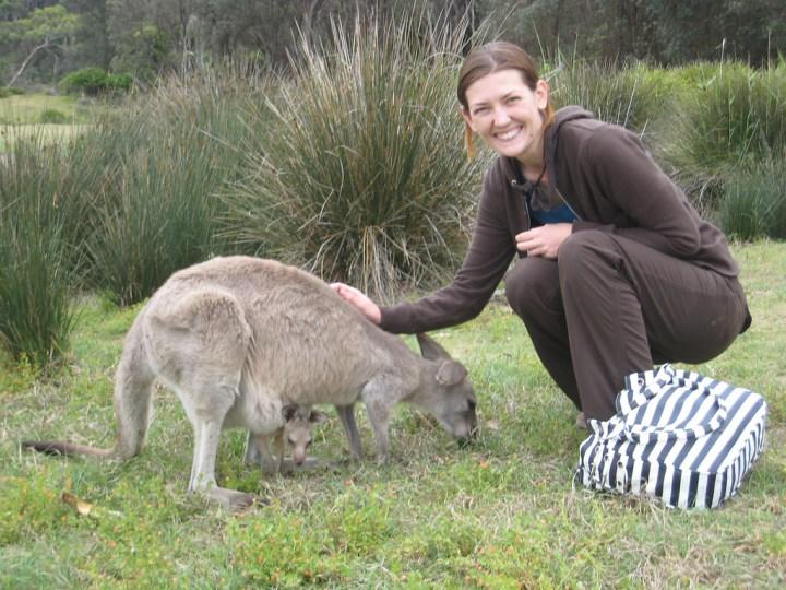 Kangaroo petting near Bateman's Bay