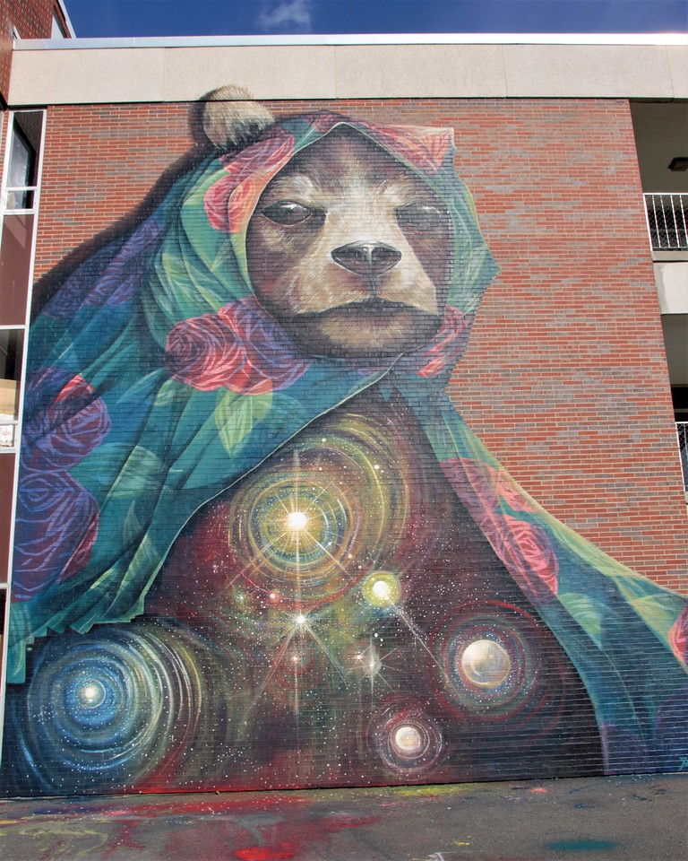 Galaxy Animal Mural at Pow! Wow! Worcester Mural Festival