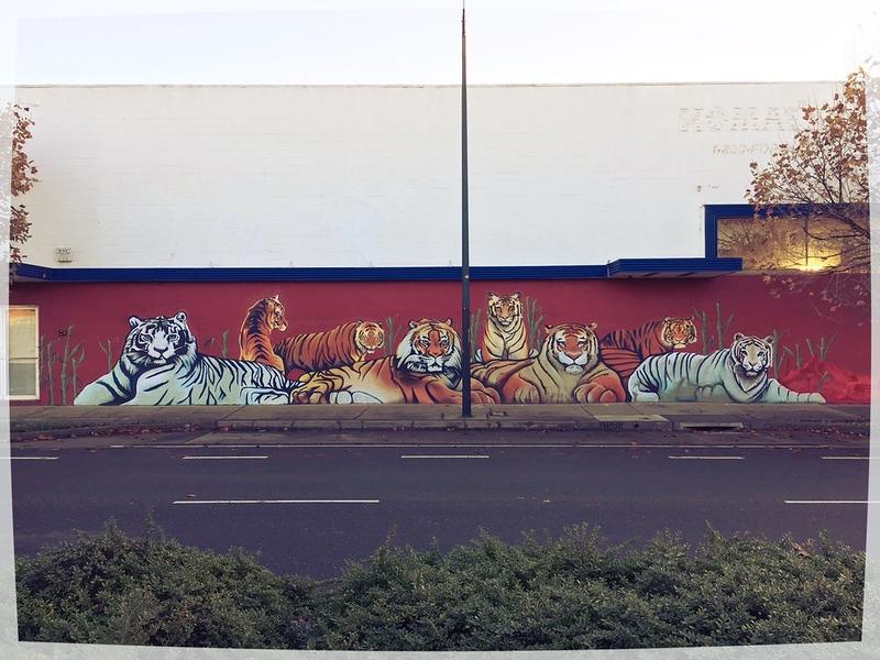 tiger street art by Dragon School
