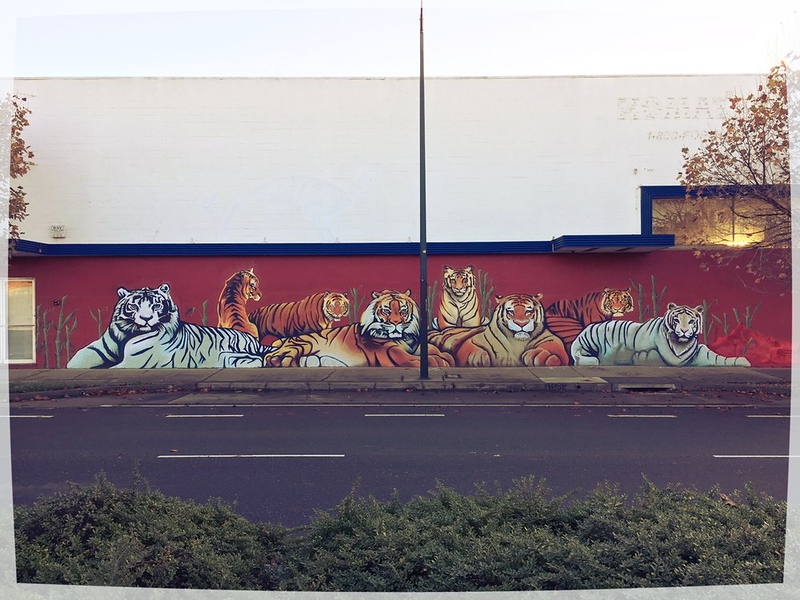tiger street art by Dragon School