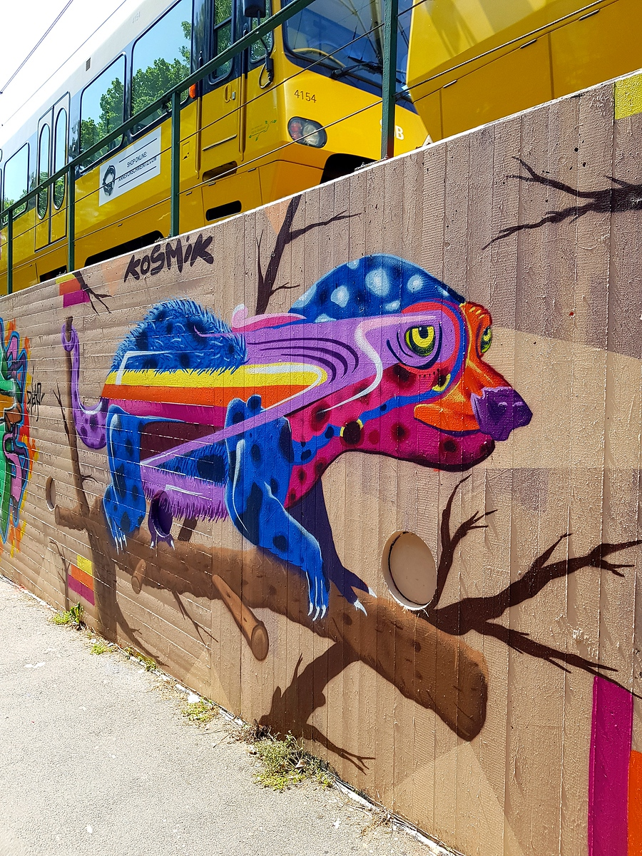 Street Art Chat Interview with Kosmik One - Why street art is important