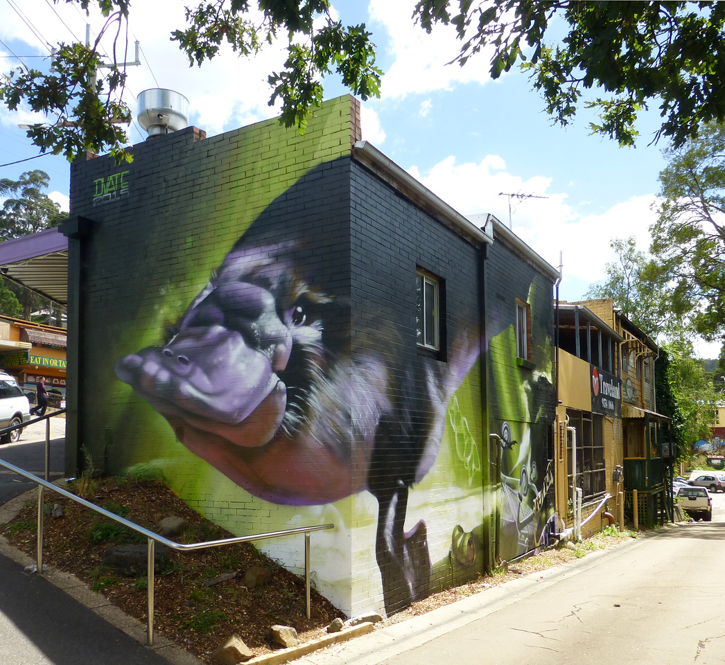 Platypus in Belgrave - Where to find some of the best street art in Melbourne - StreetArtChat.com