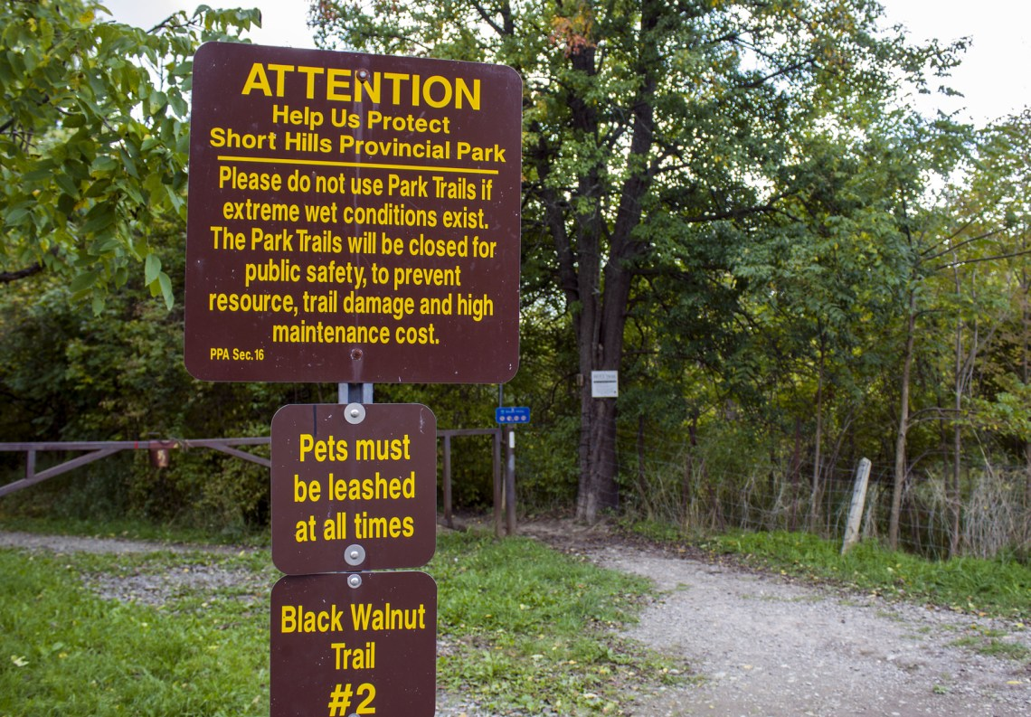 Bruce Trail Hike #7 - Facing My Fears of Hiking Alone