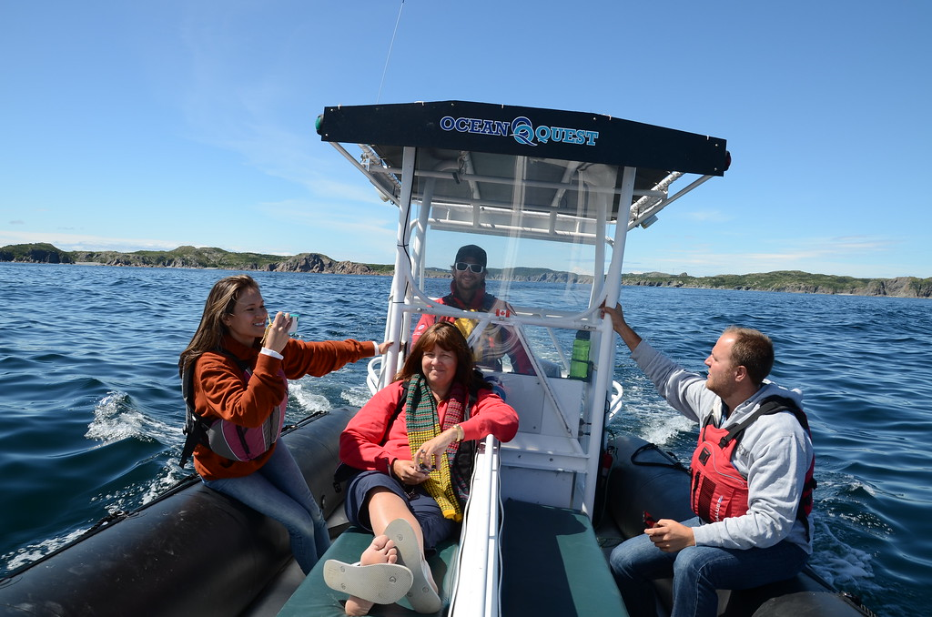 Whale watching on a zodiac in Twillingate