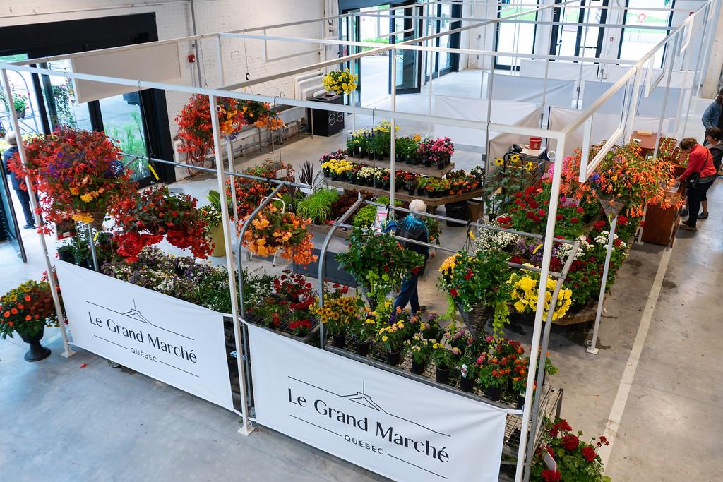Gorgeous flowers at Le Grand Marché