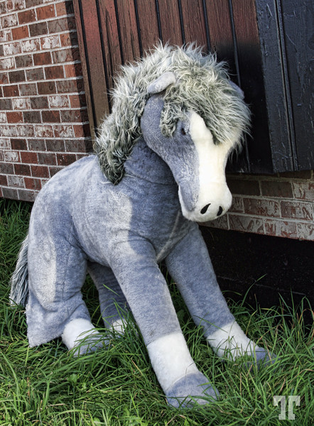 Eeyore - stuffed animal discarded toy
