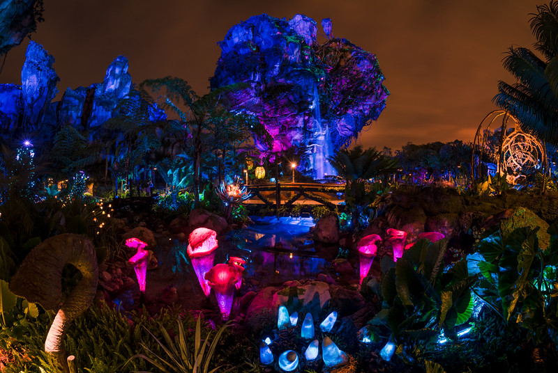 Pandora World Of Avatar Instantly Became One The Most Photogenic Lands In Walt Disney When It Opened At Animal Kingdom This Summer