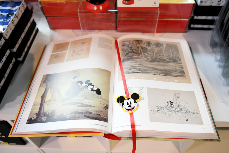 775250995NP00055_Mickey_The