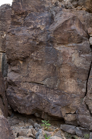 Eagletail Wilderness Petroglyphs