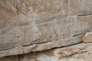 White Cliffs Petroglyphs