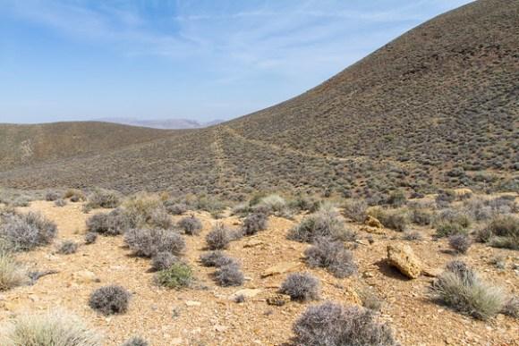 Bald Mountain Mine