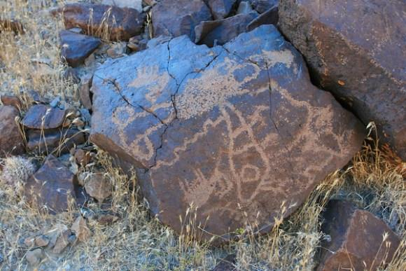 """Ubehebe Bunch"" Petroglyphs"