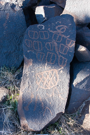 Cow Cove Petroglyphs