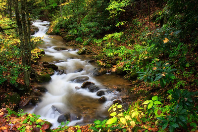 Creek in the mountains in the Fall