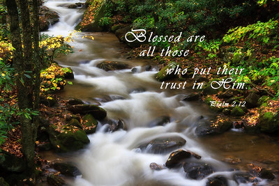 Blessed are those who put their trust in Him