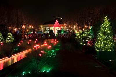 Daniel Stowe Gardens at Christmas