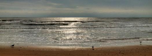 Winter's Beach