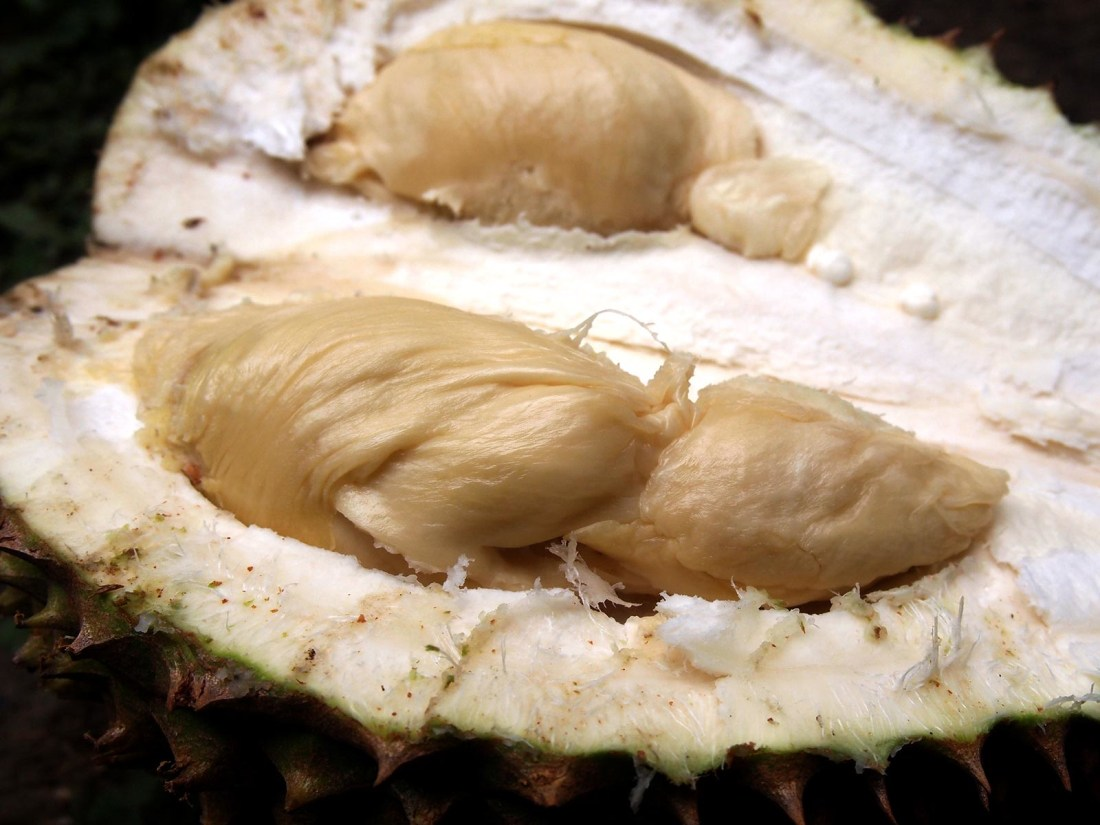 Durian on Maui