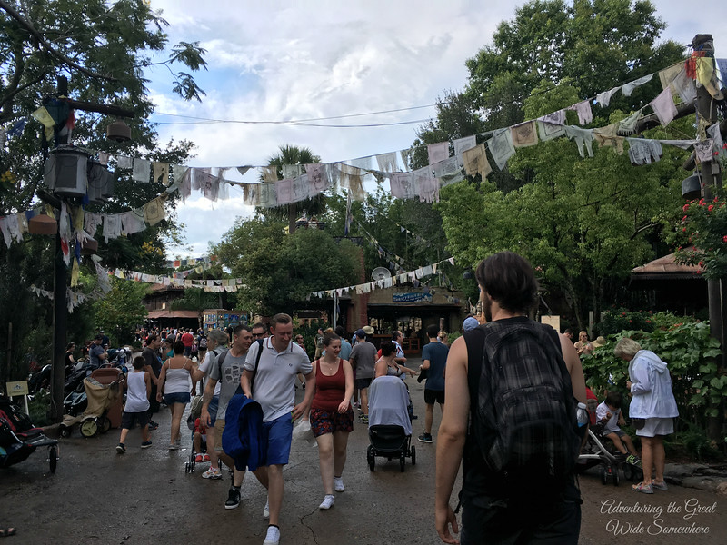 "Jared walking through Animal Kingdom's ""Asia,"" near Expedition Everest."