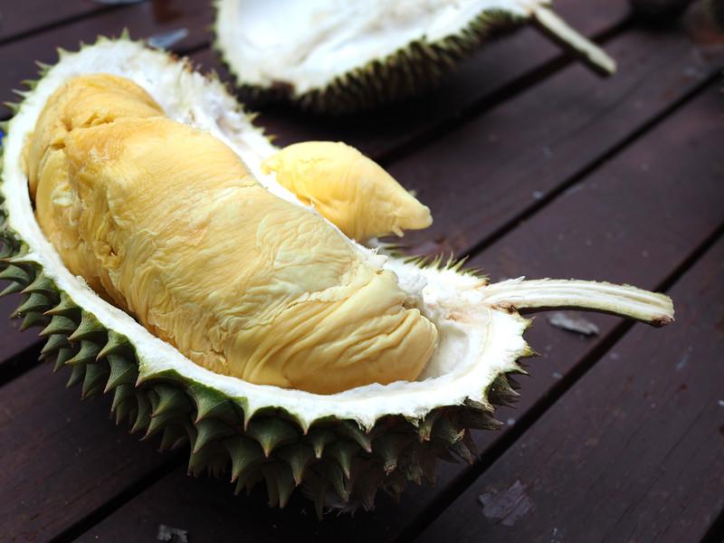 hybrid durian